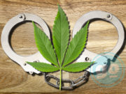 Medical Marijuana and Handcuffs