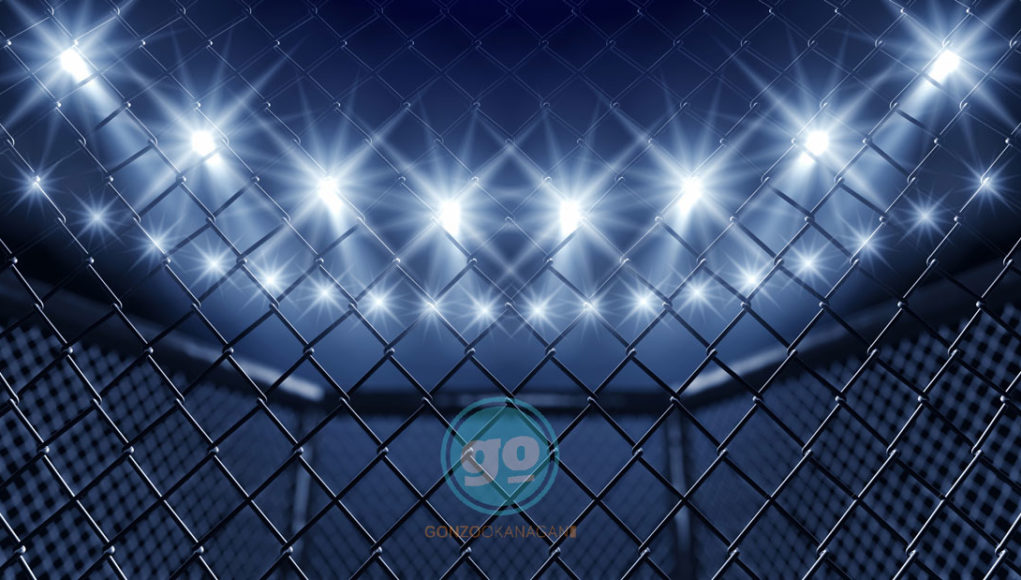 GO SPORTS - MMA Ring to Wrestling Ring