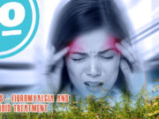 Migraines, Fibromyalgia and Cannabinoid.