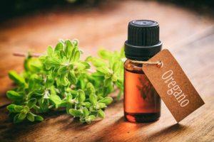 Cure the common cold with Oregano Oil