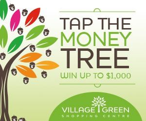 Village Green Mall Money Tree Contest