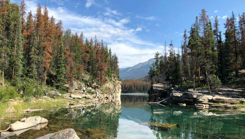 Reconciliation means rethinking parks governance By David Suzuki