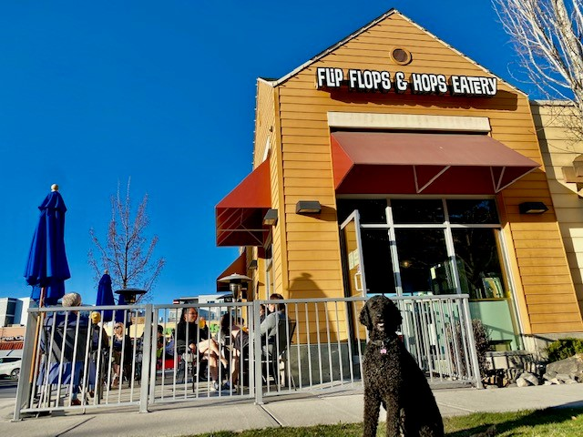 FLIP FLOPS & HOPS